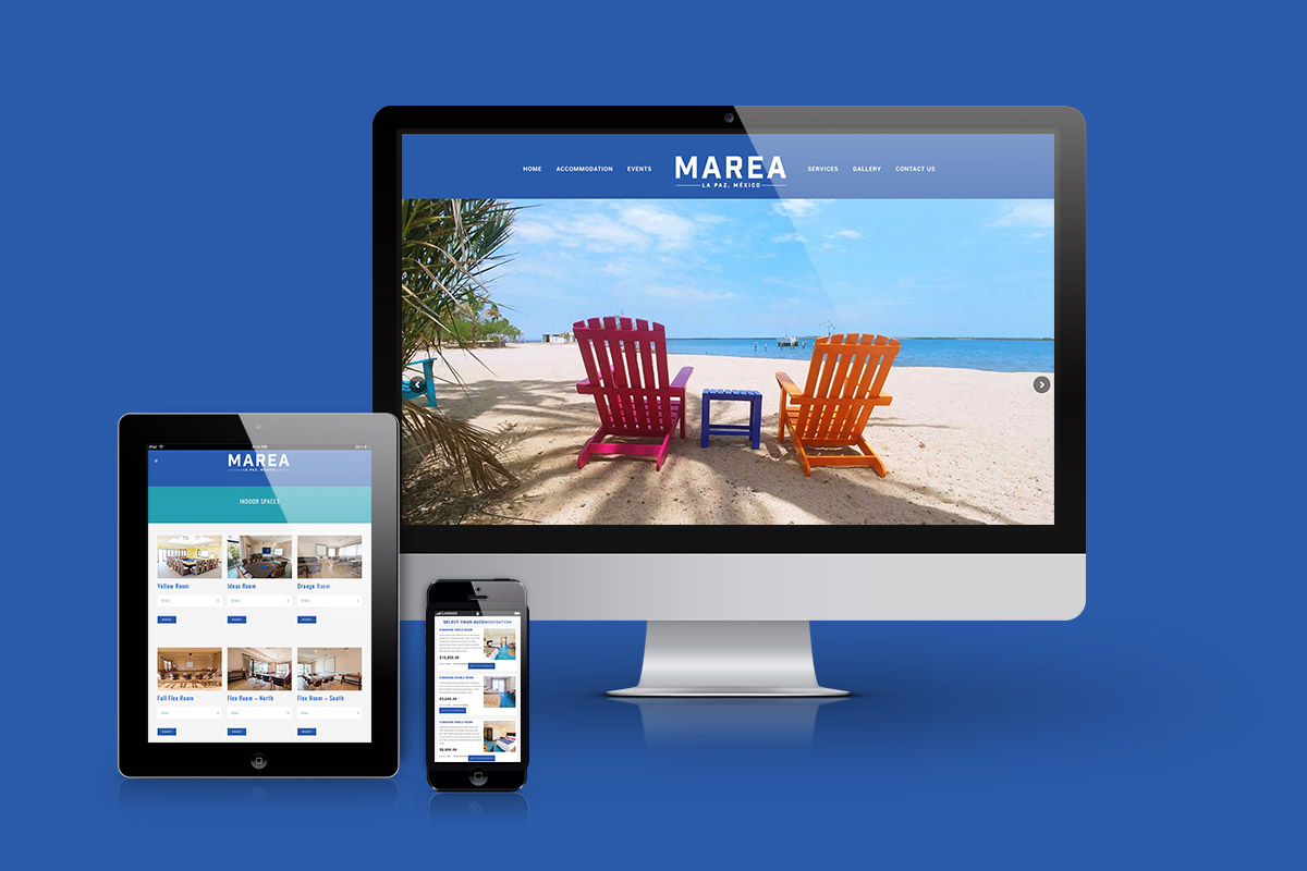 diseño web marea la paz